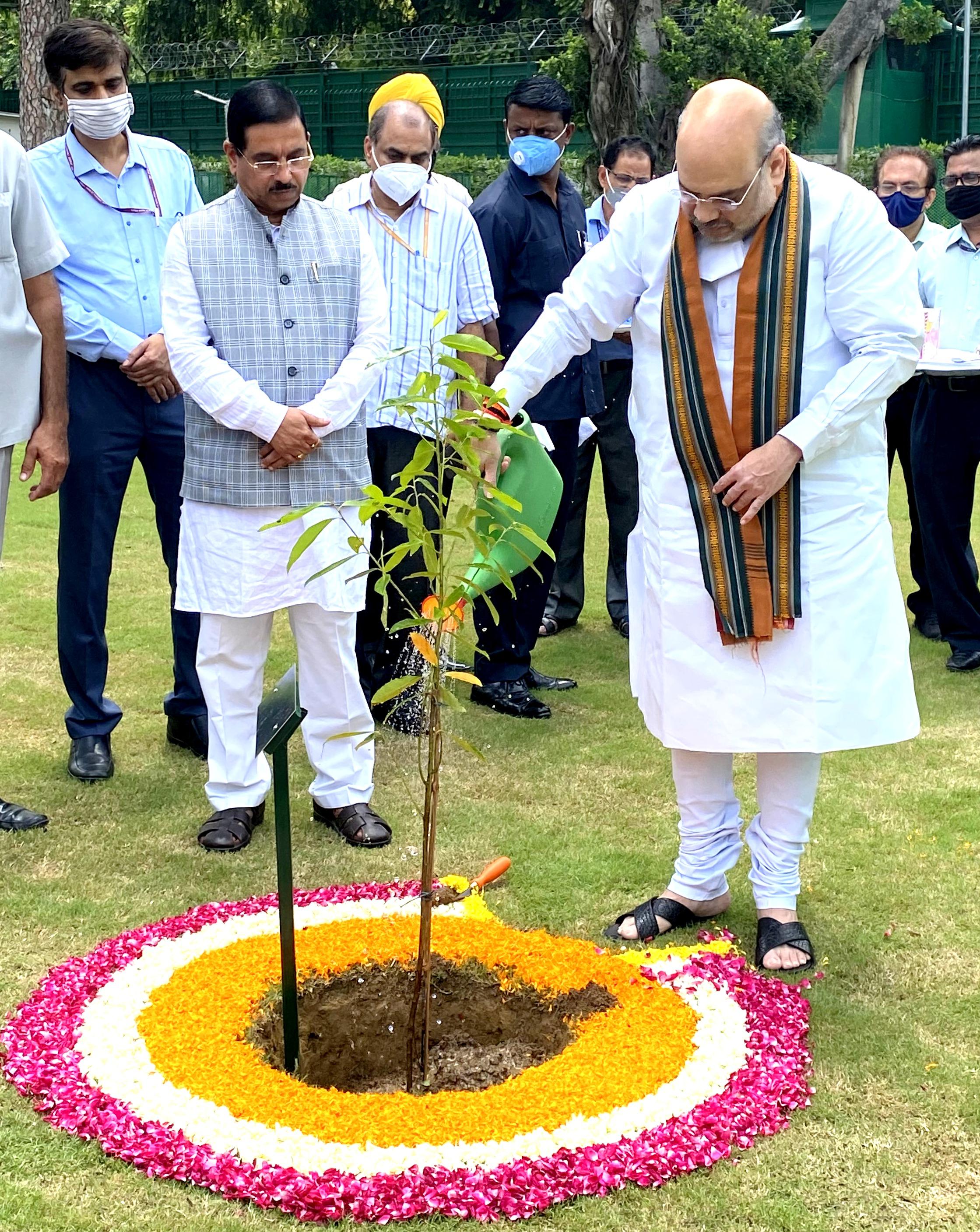Shri Amit Shah launched the Tree Plantation